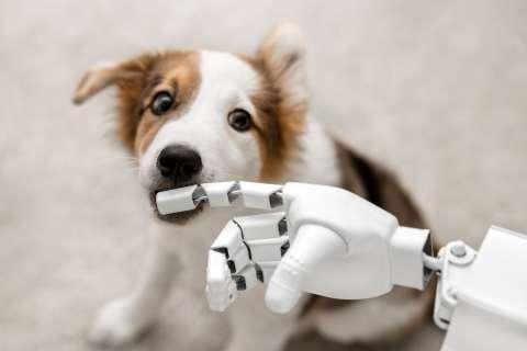 'Of er in de toekomst ware liefde mogelijk zal zijn tussen mens en android, weet ik niet' - Elke Geurts