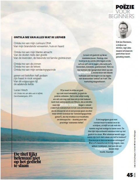 Erik Jan bespreekt Lucas Hirsch in Zin Magazine - Erik Jan Harmens