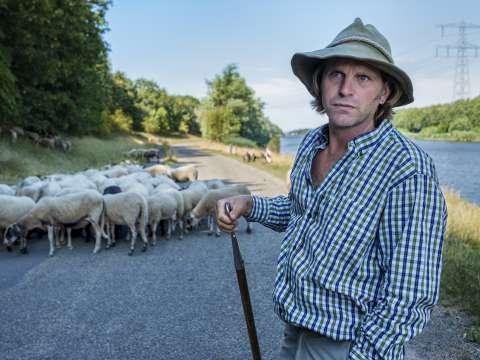 Jonah Falke loopt stage (4). Op pad met een herder en driehonderd schapen