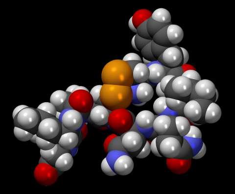 Oxytocine - Jonah Falke